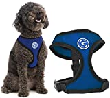 Gooby - Soft Mesh Harness, Small Dog Harness with Breathable Mesh, Blue, Medium