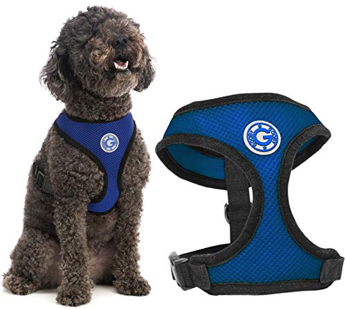 Gooby Soft Mesh Dog Harness - Blue, Small - All Weather Mesh Head-in Small Dog Harness with D Ring Leash - Perfect on The Go Breathable Dog Harness for Medium Dogs No Pull and Small Dogs