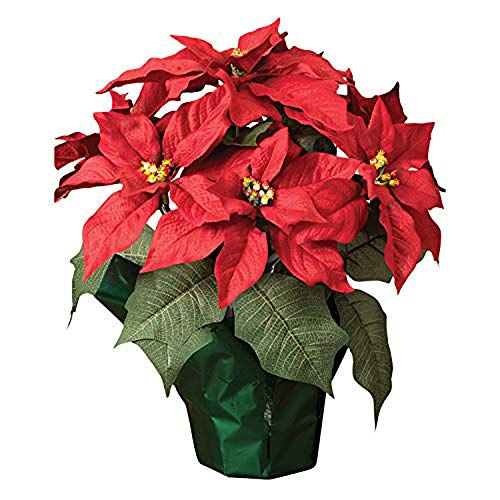 15 Potted Red Poinsettia Plant With 7 Flowers Artificial Floral Buy Online In Singapore At Desertcart Sg Productid 8649906