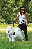 Sicherheitsgurt Hund ausziehbar / Auto Sicherheitsgeschirr für mittlere und große Hunde / Hunde Anschnallgurt - 2