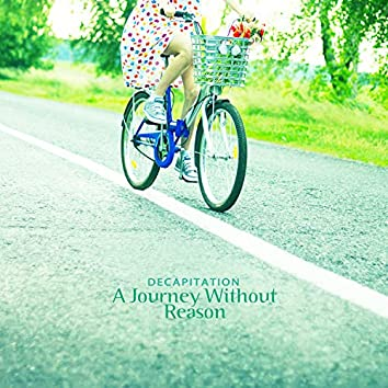 A journey without reason