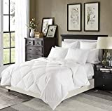 downluxe Lightweight White Down Comforter Queen Size - Down Duvet Inserts,230 Thread Count 550+ Fill Power,100% Cotton Shell Down Proof with Tabs