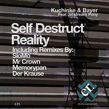 Self Destruct Reality (Remixes)