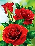 5D DIY Diamante Painting Kits Flor rosa roja Dibujo de diamantes Art Adulto Niño Completo Números Full Crystal Rhinestone Cruz Puntada Bordado Familia Pared Decoración Regalo Suqare Drill,80x110cm