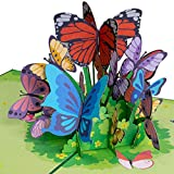 Paper Love Butterflies Pop Up Card, 3D Popup Greeting Cards, for Mothers Day, Spring, Fathers Day, Graduation, Birthday, Wedding, Anniversary, Thank You, Get Well, All Occasion   5' x 7'