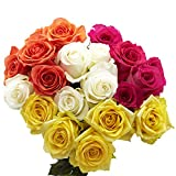 GlobalRose Assorted Color Roses - 100 Flowers- Next Day Delivery by Friday July 31