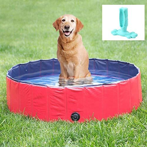 Zusammenklappbare Badewanne für Welpen, Sommerbadewanne für Kinder, Badewanne, Badewanne für Hundepflege, ausgestattet mit Hundezahnbürste-L