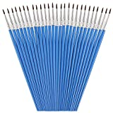 30 Packs Pointed Round Painting Brush Fine Tip Watercolor Brushes Detail Paint Brush for Kids Children Students Starter