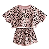 Toddler Baby Girls Leopard Print Summer Clothes Set T-Shirt and Short Pants 2pcs Outfits (1-Pink, 2T)