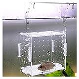 XINXI-YW Vaso de incubadora de Huevos de Pescado Acuario Transparente Acuario Frito Pote Frito Incubadora Producción Caja De Reproducción Caja Individual Y Malla De Red con Aislamiento Doble