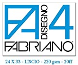 Fabriano F4 05200597, Album da Disegno, Formato 24 x 33 cm, Fogli Lisci, Grammatura 220gr/...