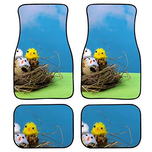 AQQA 4 Pieces Men Car Floor Mats Bird's Nest and Eggs Women Floor Mats For...