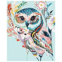 Paint by Numbers Kit Diy Owl Painting Canvas Framed Unframed for Adults Beginner