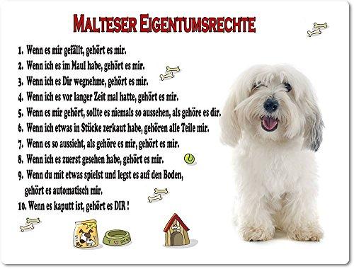 Merchandise for Fans Blechschild/Warnschild/Türschild - Aluminium - 15x20cm Eigentumsrechte Motiv: Malteser (01)