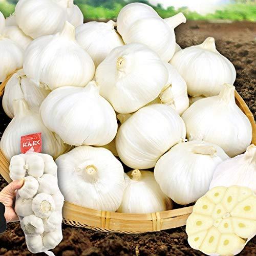 国華園 大特価 中国産 にんにく 10�s 1組 野菜