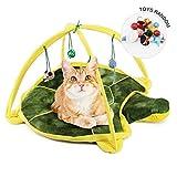 Flyinghedwig - Alfombra de Juegos para Gato, con 4 Juguetes Colgantes, diseño de Gato