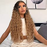 AISI QUEENS Long Curly Wig Ombre Brown Hair Wigs for Women Middle Part Curly Wavy Wigs Synthetic Wigs Heat Resistant Fiber for Daily Party Use