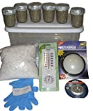 Simple Mushroom Growing Kit