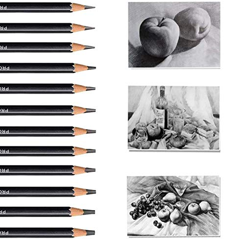Juego De 12 Lápices Profesionales,Juego de lápices de boceto, lápices de dibujo profesionalIdeal para Artistas, Adultos y Niños