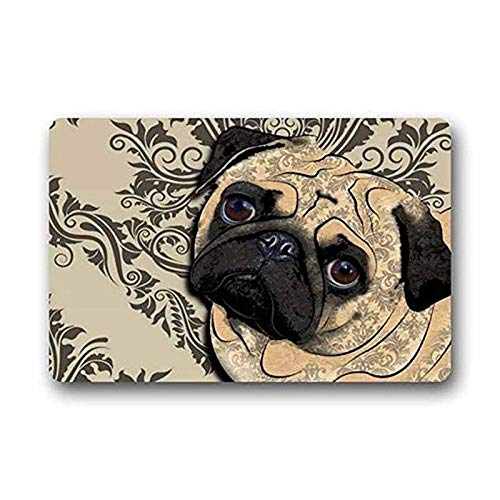 Diatomaceous Earth Bath Mat,Hi,Doormat Design Best Funny Cute Pug Dog Home Door Nonslip Absorbent Bath Mat, Fast Drying Hard Bathroom Floor Shower Mat, 15.5 X 24 Inch Bathroom Decor