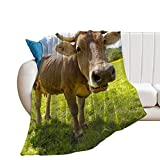Desheze Kuscheldecke Kinder Kuh Fleecedecke Flanell Decke Wohndecken Couchdecke Flauschig Überwurf Tagesdecke 100×130cm