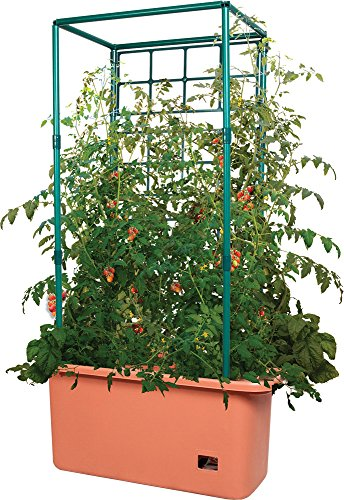 Hydrofarm GCTR 10 Gal Tomato Garden Planting Grow System with 4 Foot Trellis Wheels for Indoor/Outdoor Climbing Vines & Flowers Tree Tower, Green