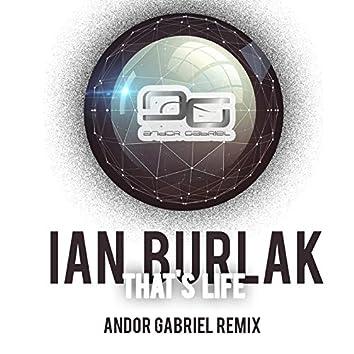 That's Life (Andor Gabriel Remix)
