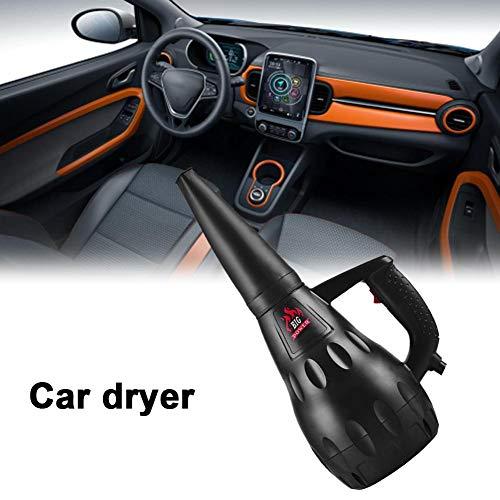 Jinclonder Autodroger-luchtkanon-blazer, industriële hetelucht-autodroger met hoge prestaties 1500 W voor het wassen van de auto, sneeuwruiming-motor, ontdooien van water