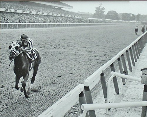 horse racing pictures - 1
