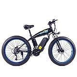 WFIZNB 1000W Fett Reifen Elektrische Bike E Bike Mountainbike 26 Zoll Leistungsstarke Elektrische Fahrrad mit Abnehmbare 48V 13Ah Lithium-Iion Batterie Offroad-Bikes,Blau
