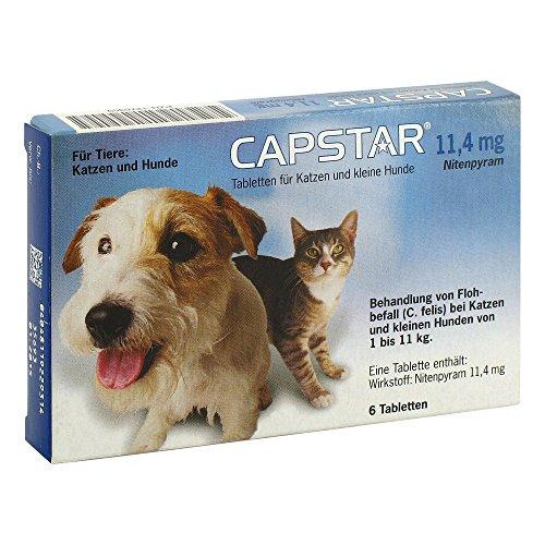 CAPSTAR 11,4 mg Tabletten f.Katzen/kleine Hunde 6 St Tabletten