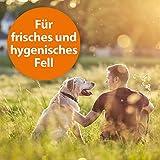 Quiko 077410 Ardap Anti Floh Shampoo für Hunde, 250 ml - 6