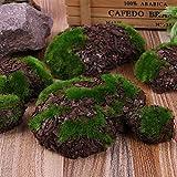 PACPL 12 unids Fake Rock Verde Espuma Musgo Piedra Artificial Flor de Madera Micro Paisaje Hierba Planta Mascota Juguete casero jardín decoración (Color : Green)