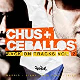 Vibrate 2011 (Zoltan Koltan & Jerome Robins Tech Funk Mix)
