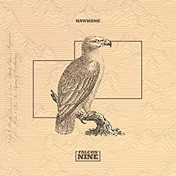 Falcon Nine