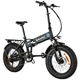 Speedrid Folding Electric Bike Fat Tire Electric Bike 20' 4.0, 500W Powerful Motor, 36V 12.5Ah Removable Battery and Professional 6 Speed