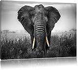 prachtvoller Elefant schwarz/weiß Format: 80x60 auf Leinwand, XXL riesige Bilder fertig gerahmt mit Keilrahmen, Kunstdruck auf Wandbild mit Rahmen, günstiger als Gemälde oder Ölbild, kein Poster oder Plakat