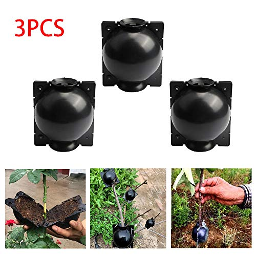 OADAA 3PCS 5CM Diameter Plant Root Growing Box High Pressure Propagation Ball Plant Rooting Box Grafting for Garden Grafting Rooting Growing Breeding