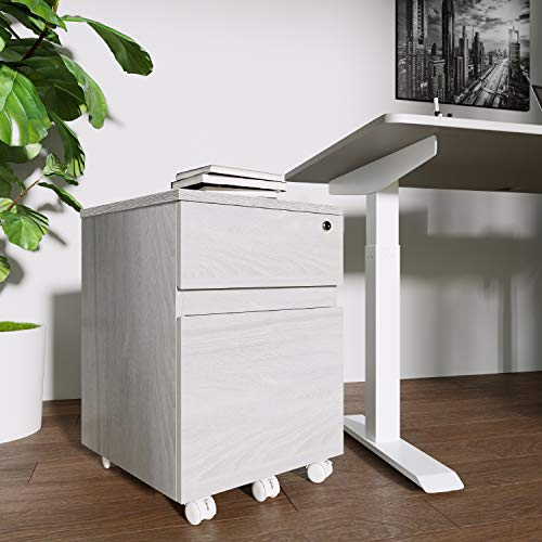 Techni Mobili Rolling 2 Drawer Vertical Filing...