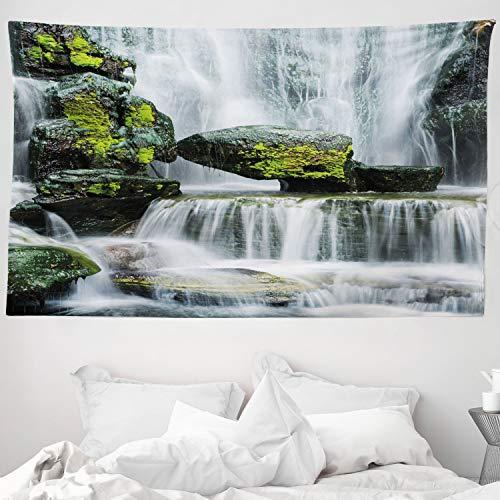ABAKUHAUS Paisaje Tapiz de Pared y Cubrecama Suave, Cascada con Rocas, Lavable Colores Firmes, 230 x 140 cm, Verde Blanco Y Negro