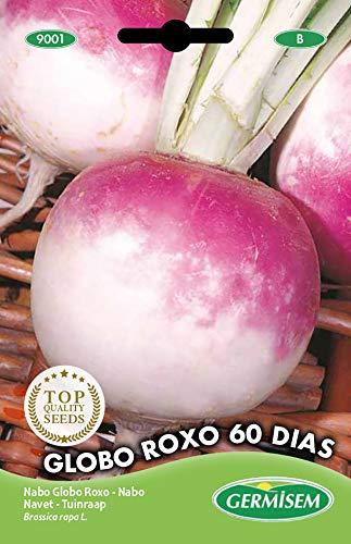 Germisem Globo Roxo 60 Dias Semillas de Remolacha 20 g