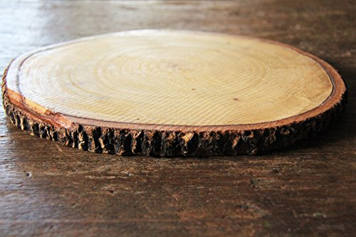 Tamarind Thai Size 8' - 9' Wood Slices For Centerpieces - Tree Trunk Slice - Natural Thickness 1'