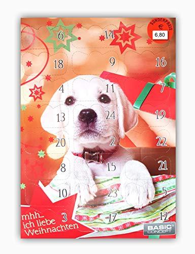 Basic C Hunde Adventskalender Hundeadventskalender