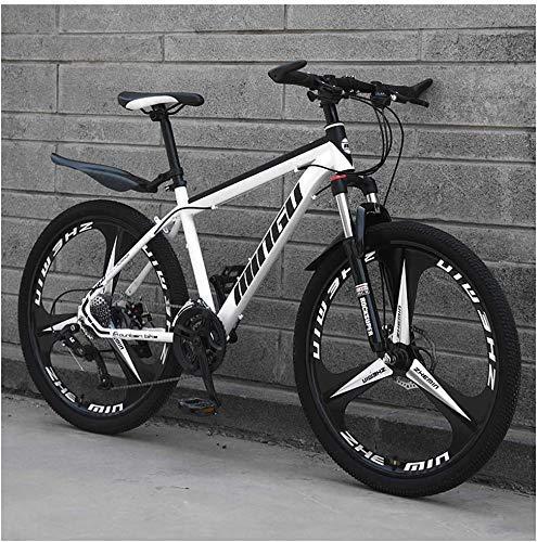 FZC-YM Vélos de Montagne de 24 Pouces, vélo en Acier au Carbone pour Femmes, Transmission Tout Terrain VTT avec Frein à Double Disque,