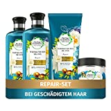 Herbal Essences PURE:renew Haarpflege Set: 2x Marokkanisches Arganöl, Repair Shampoo 250 ml + 1x Pflegespülung 200 ml + 1x Haarmaske 250 ml, Haarpflege Arganöl, Haarpflege Glanz, Shampoo Damen