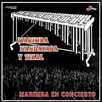 Marimba En Concierto