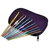 TRIXES Un Ensemble en Boite de 22 Crochets en Aluminium pour Tissage Artisanal et pour coiffer des Cheveux comme Dreadlocks