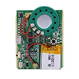 Tihebeyan Módulo de música USB, Módulo de grabación de Voz Chip pulsador Módulo grabable Activado para Tarjetas de felicitación de Caja de Regalo Musical DIY(Control de botón)