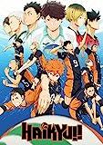 Theissen Haikyuu Anime Manga Poster - Matte Poster
