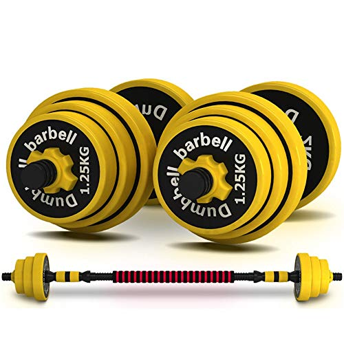 UNKB Iron Dumbbell Home Men's Fitness Equipment Pair Of Female Adjustable Weight Sub-bell Barbell Set, Fitness Muscle, Strength Training Bars,Lifting Dumbells For Body Workout Home Gym (Size : 10kg)